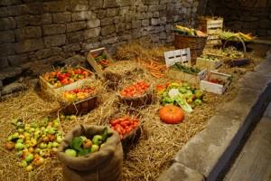 Lagerung von Gemüse im kühlen Gewölbekeller